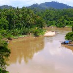 Jungle River in Kuala Lipis