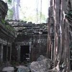 Ta Prohm, Jungle Temple