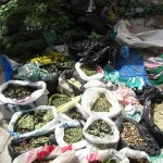 Spices and herbs at the street market